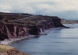 What I saw driving up Newfoundland's west coast, November 1988.